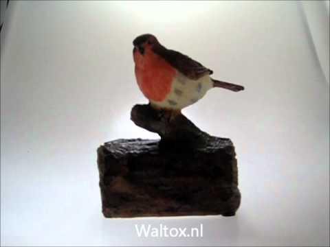 Vogel met Sensor.wmv