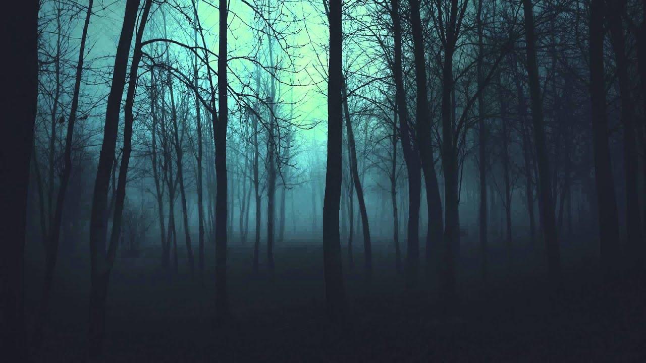 Spooky Fall Wallpaper Damian Koszewski Bosque Oscuro Youtube