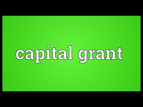 Capital grant Meaning