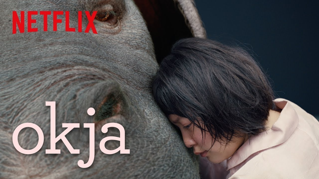 Image result for okja netflix