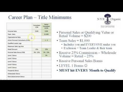 Understanding the Career Plan - Senior Consultant