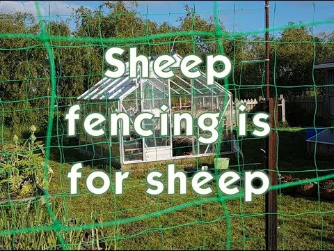 Sheep Fencing is for sheep