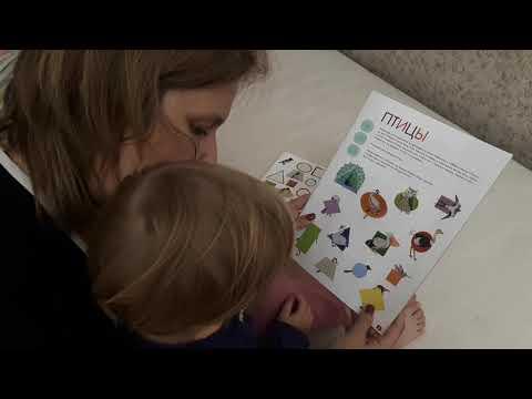 Развивающие занятия для ребенка 2 лет. Чем заняться с ребенком дома?