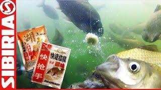обзор китайского теста (херабуна) для ловли карася, толстолобика, белой рыбы . СКОРО