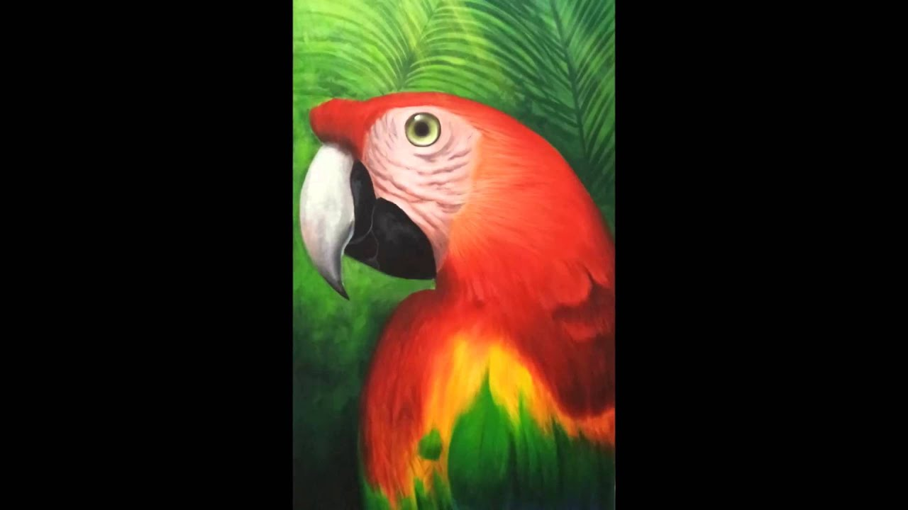 Guacamaya, acrílico sobre tela / Macaw, acrylic on canvas - YouTube