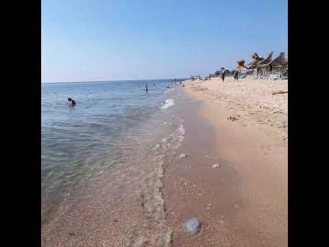 Обстановка с медузами на 31 07 2021 г Бердянск пляж санатория