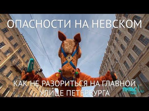 Опасности на Невском проспекте. Как не разориться на главной улице Петербурга