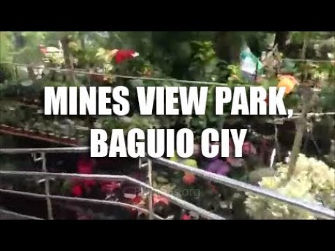 Mines View Park, Baguio City Philippines