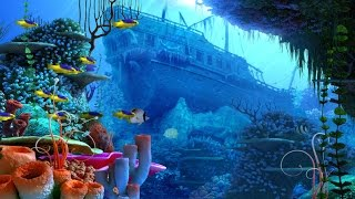Caribbean Music Instrumental - Coral Reef
