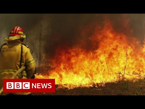 Australia fires: Preventing the spread - BBC News