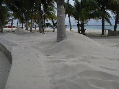 Snow on Guadeloupe Island Caribbean Full Story   Mini Ice Age 2015-2035 (148)