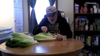 FAMILY FARMER  GROWING ROMAINE LETTUCE FROM THE STORE