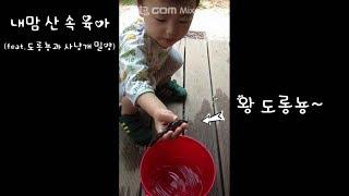 내 맘 산 속 육아(feat.도롱뇽과 사냥개 밀양)