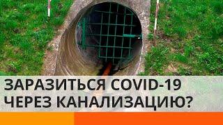Коронавирус может распространяться через канализацию ICTV