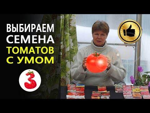 Как выбрать семена помидоров с умом. 0+