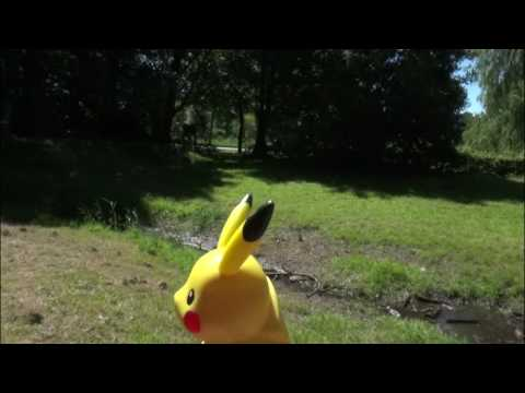 Inspecteur Cleausac - Pokémon Go