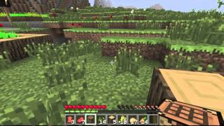 Nick and Clayton Minecraft Challenge Pt. 1