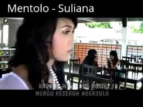 Mentolo - Suliana