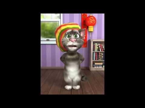 VIDEO # 9 packy el gato catracho | el sueno americano y de toda madre