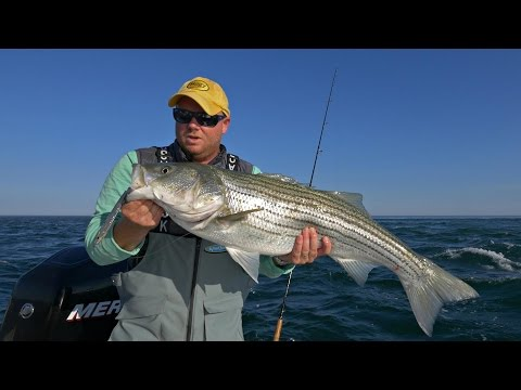How To: Casting For Stripers In Rips At Monomoy On Cape Cod