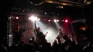 Zebrahead - I'm just here for the free beer (live in Munich)