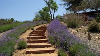 How To Calculate Horizontal Hillside Run To Build Stairs