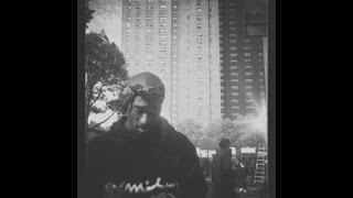 A$AP MOB - Hella Hoes (Feat. 2Pac & Kurupt) [Remix]