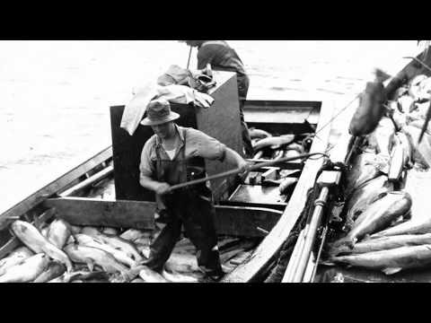 USACE Provides Fish Passage At McNary Lock And Dam