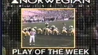 1993 Michigan Replay Michigan vs. Illinois