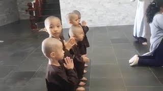 5 Chú Tiểu   PHẦN 2   CẬN CẢNH BÊN TRONG THIỀN VIỆN TRÚC LÂM Ở TIỀN GIANG..!!