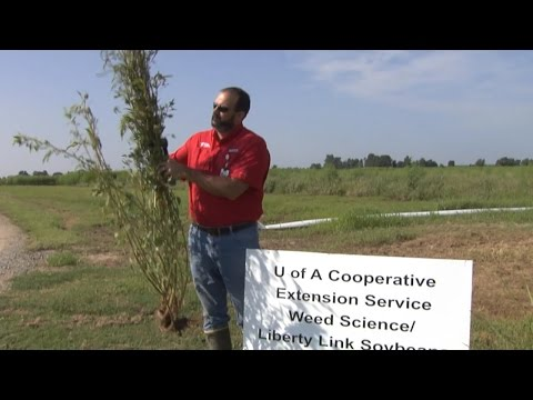 Agriculture Farm Field Day Tour