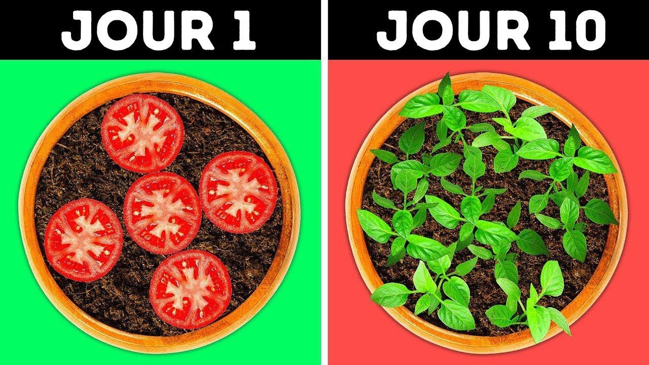 23 Idees Geniales Pour Ton Jardin