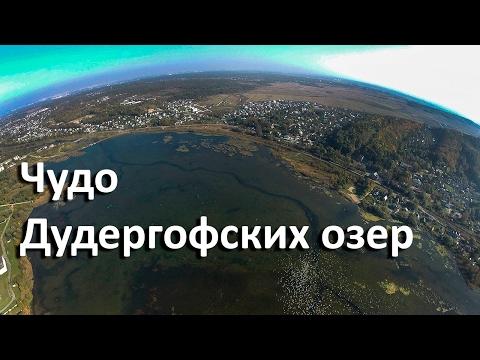 Чудо Дудергофских озер: уникальные озера у Красного села