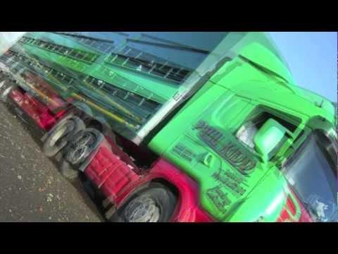 Plowman Livestock - Paul Kidd