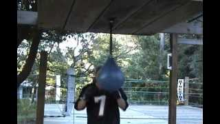 Defensive Practice with a Punching Bag ~ Dingle Ball Bag ~  Punch Professor ~