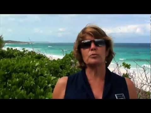 Real Estate in Hope Town and Elbow Cay, Abaco, Bahamas, by Jane Patterson