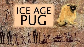 Where Did Pugs Come From? Meet the Ice Age Great Woolly Pug