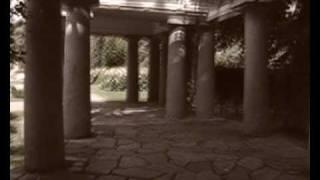 """Cuckoo Cocoon"" Genesis (cover)"