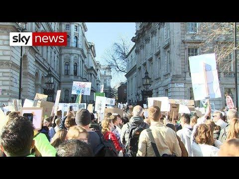School children go on strike over climate change