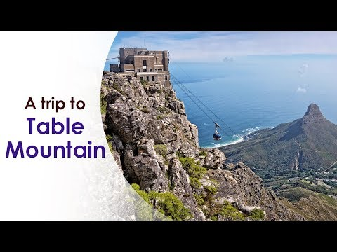African Safari   Episode 1   A trip to Table Mountain, Cape Town   India Tour of South Africa