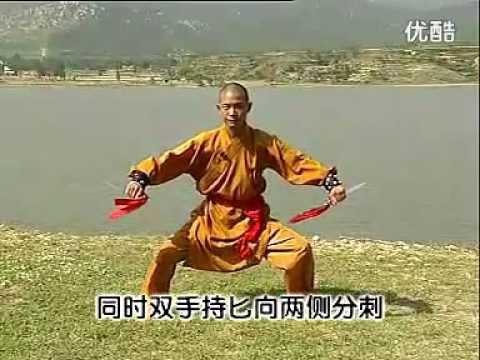 Shaolin kung fu twin knives 1