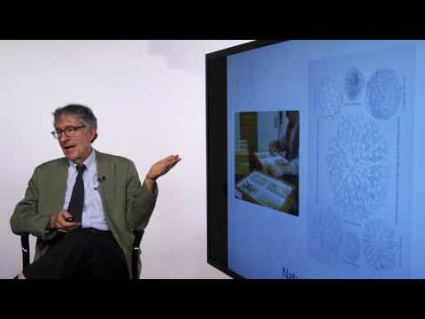 Howard Gardner Discusses Multiple Intelligences - Blackboard BbWorld 2016 HD