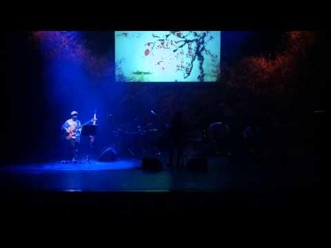 Hi, Bird performance at concert in Korea