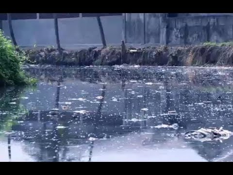 Manila Bay rehab: How dirty is Tullahan River?