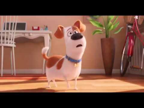 Evcil hayvanların gizli yaşamı full hd tek part full