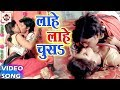 लाहे लाहे चूस - Lahe Lahe Chush - Nawal Rangbaj - Bhojpuri Hot Video Song 2017New