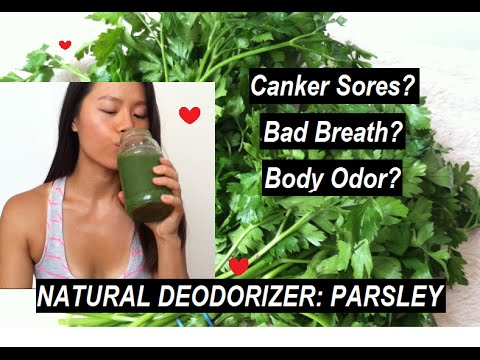 Eliminate Bad Breath & Body Odor With PARSLEY (Nature's Deodorizer)