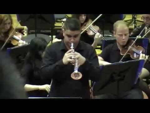 Download Concierto para trompeta en Do menor de Benedetto Marcello.