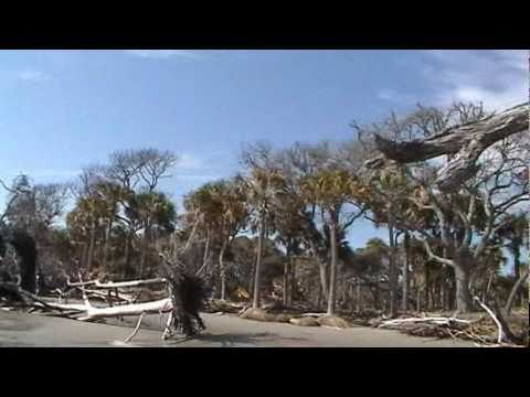 Hunting Island State Park Tour-1, February 18, 2011