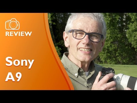 Sony A9 detailed and extensive review